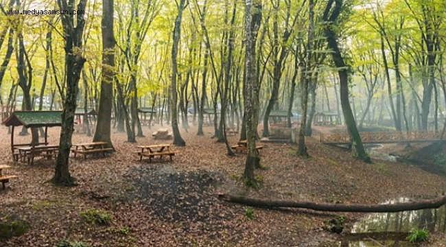 Samsun'da bir çok piknik alanına giriş yasaklandı